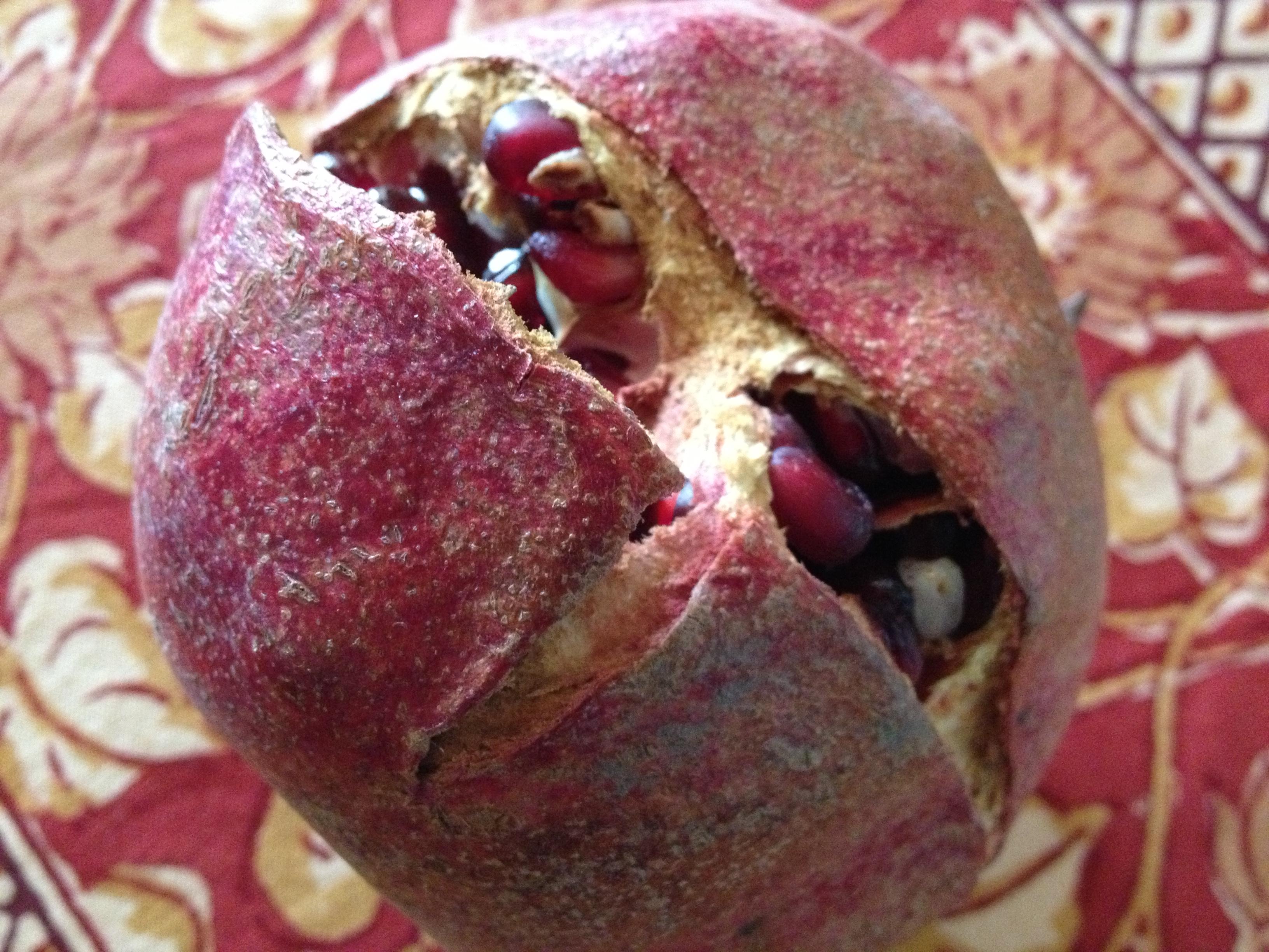 Food Photo Pomegranate 001